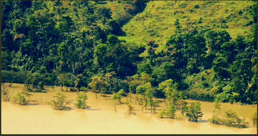 Flooded Reventazon River